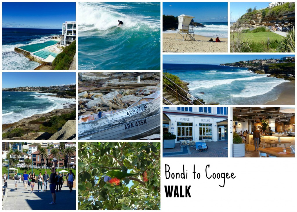 Sydney Bondi to Coogee Walk